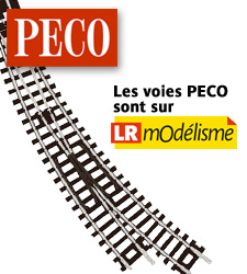 PA_pub_PECO